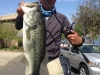 5.2 bass, Castaic 4-20-14