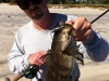 spotted-bay-bass2-2-4-13